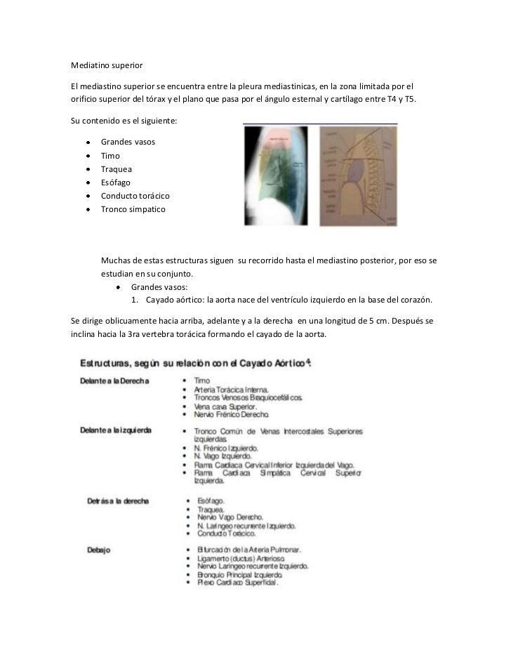 Mediatino superiorEl mediastino superior se encuentra entre la pleura mediastinicas, en la zona limitada por elorificio su...