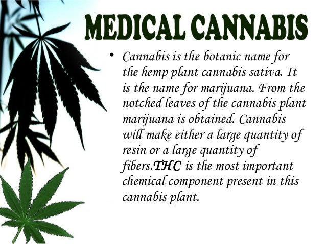 medical marijuana and its positive and Session, we will explore the history of marijuana and its journey towards  becoming a mainstay of  potential positive results of medical marijuana we will  also.