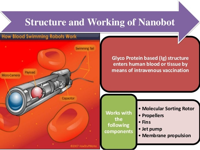 nanobots and nanotechnology in the human Human dna is under constant assault from harmful agents such as ultraviolet  sunlight  developments in nanotechnology and nanorobotics are opening up  the.