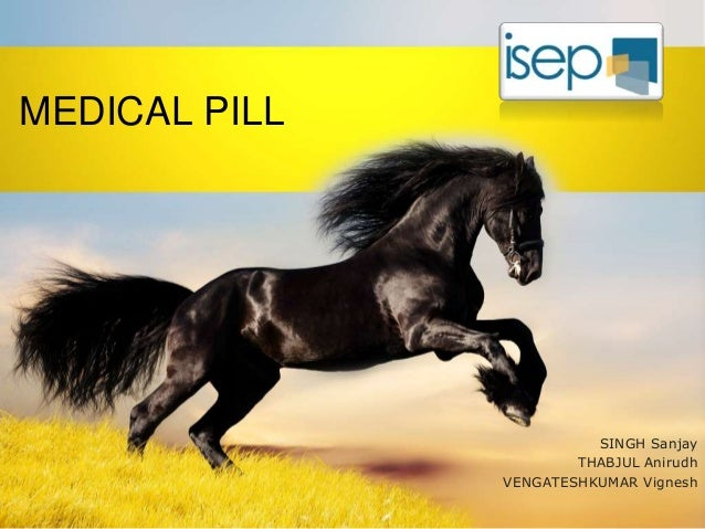 Medical Pill For Measuring The Temperature In The Stomach Of The Horse
