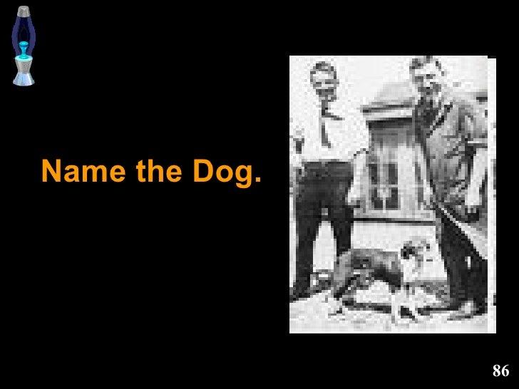 Name the Dog.