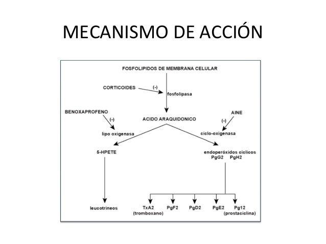 EFEDRINA MECANISMO DE ACCION DOWNLOAD