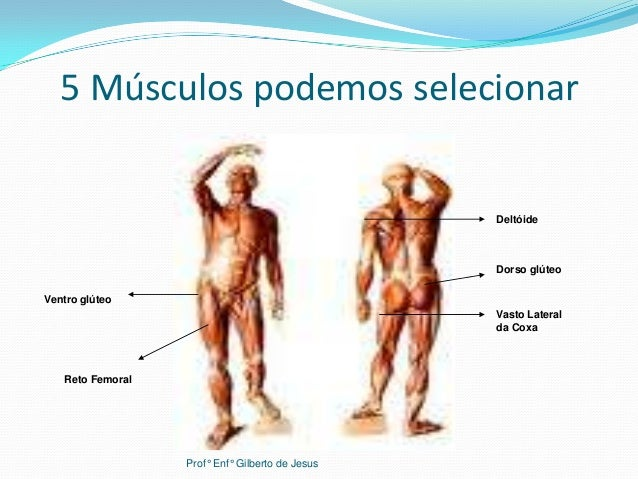 5 Músculos podemos selecionarDeltóideDorso glúteoVasto Lateralda CoxaVentro glúteoReto FemoralProf° Enf° Gilberto de Jesus