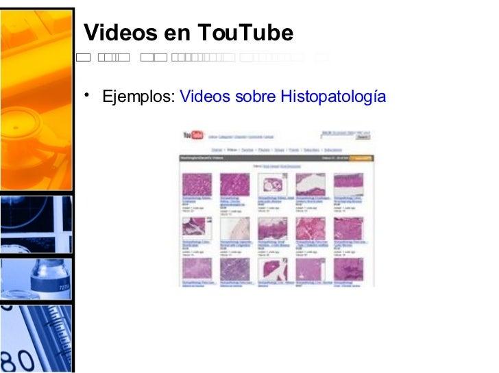 Videos en TouTube <ul><li>Ejemplos:  Videos sobre  Histopatología </li></ul>