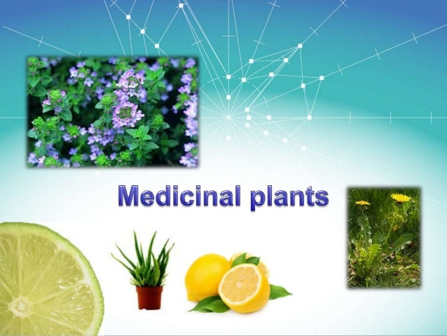 Medicinal plants have been identified and used throughout human history. Plants have the ability to synthesize a wide vari...