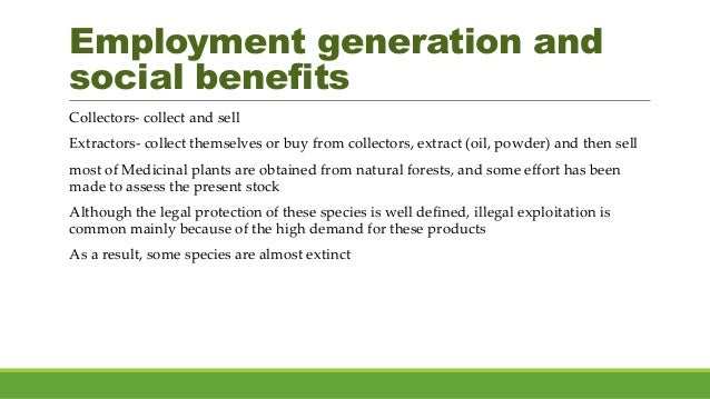 Employment generation and social benefits Collectors- collect and sell Extractors- collect themselves or buy from collecto...