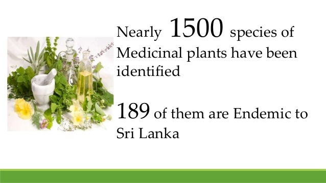 Nearly 1500 species of Medicinal plants have been identified 189 of them are Endemic to Sri Lanka