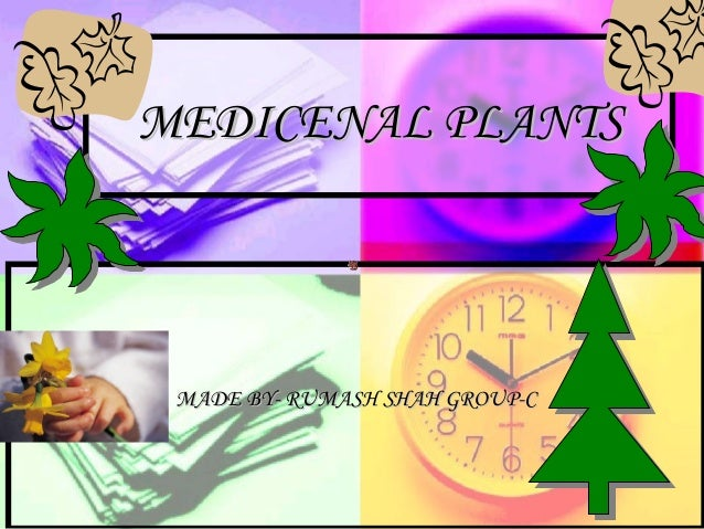 MEDICENAL PLANTSMEDICENAL PLANTS MADE BY- RUMASH SHAH GROUP-CMADE BY- RUMASH SHAH GROUP-C