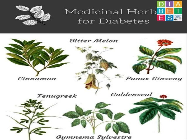 Medicinal plants and diabetes A series of Presentation By Mr