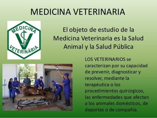 MEDICINA VETERINARIA El objeto de estudio de la Medicina Veterinaria es la Salud Animal y la Salud Pública LOS VETERINARIO...