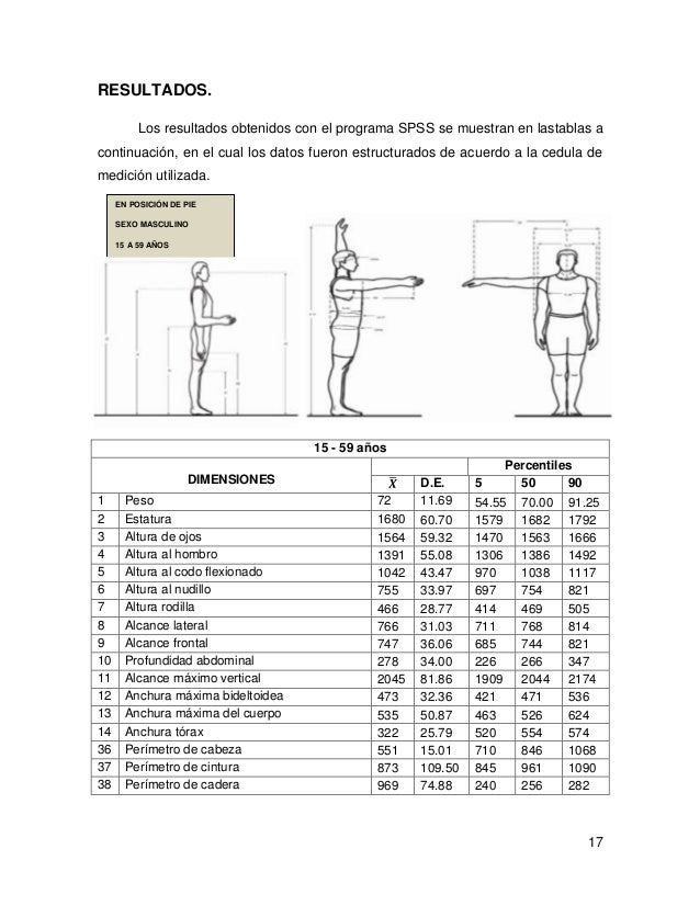Medici N De Dimensiones Antropom Tricas De Trabajadores