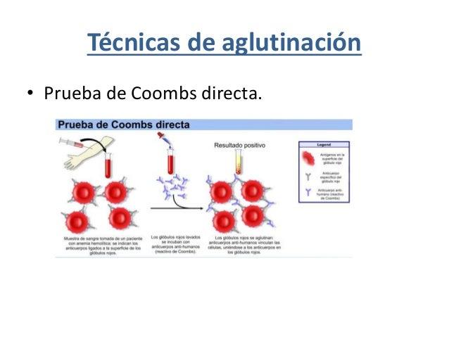 Medición de las inmunoglobulinas y anticuerpos