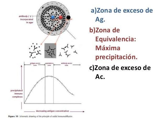 a)Zona de exceso de Ag. b)Zona de Equivalencia: Máxima precipitación. c)Zona de exceso de Ac.