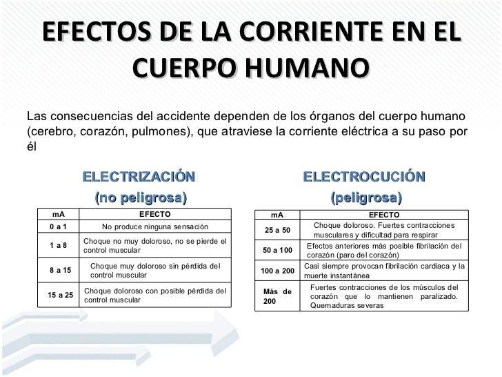 Medidas de protecci n y prevenci n for Medidas ergonomicas del cuerpo humano