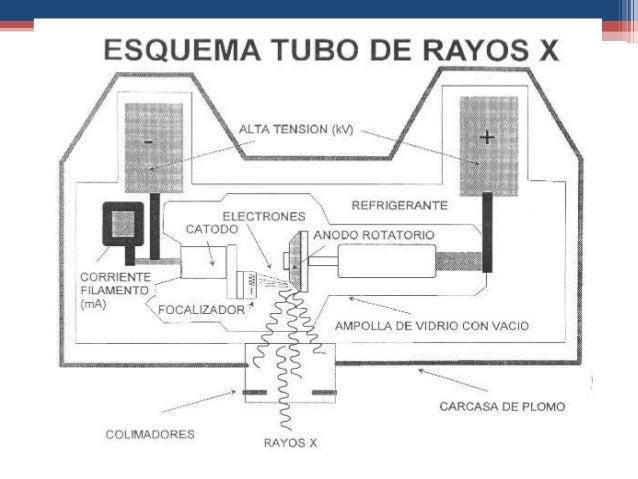 Medidas d seguridad rx for Cuarto de rayos x medidas