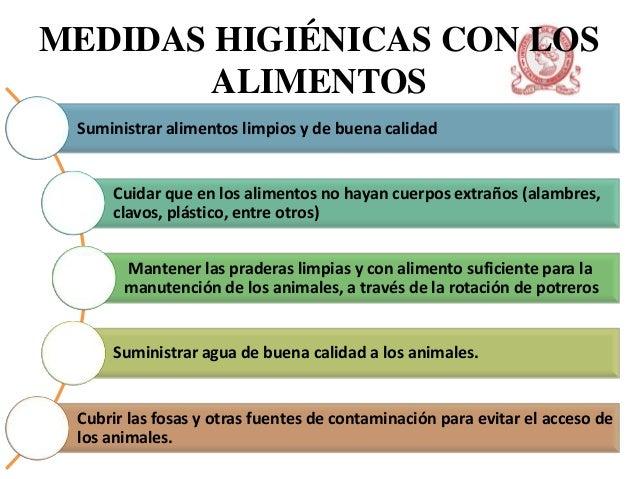 Medidas higienicas - Fuentes de contaminacion de los alimentos ...