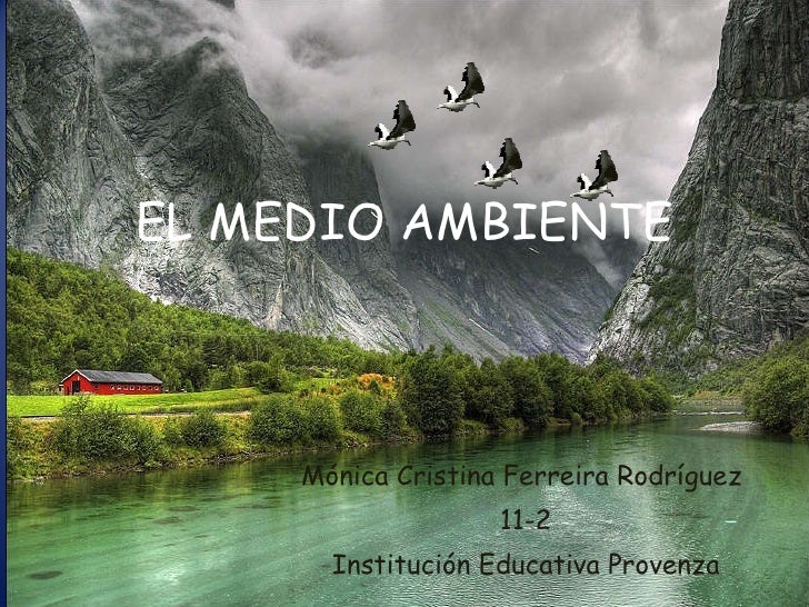 Mónica Cristina Ferreira Rodríguez  11-2 Institución Educativa Provenza EL MEDIO AMBIENTE