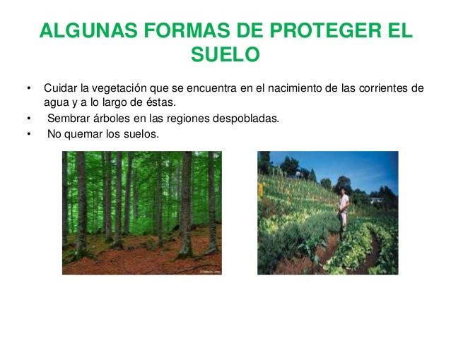 Diapositivas medio ambiente for 5 cuidados del suelo