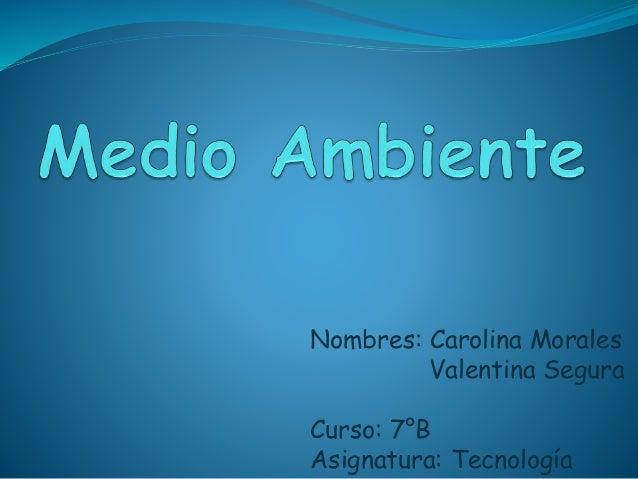 Nombres: Carolina Morales Valentina Segura Curso: 7°B Asignatura: Tecnología