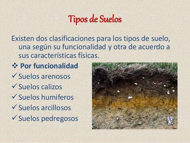Suelo y tipos de suelo medio ambiente for Suelos y tipos de suelos