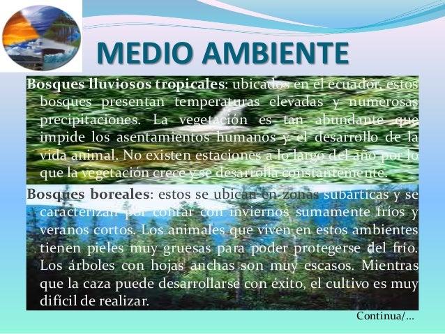 Medio ambiente for Medio en el que habitan los arboles