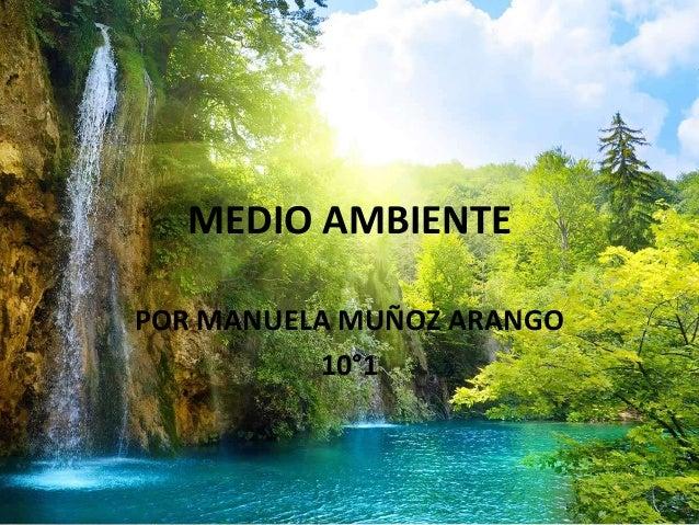 MEDIO AMBIENTE POR MANUELA MUÑOZ ARANGO 10°1