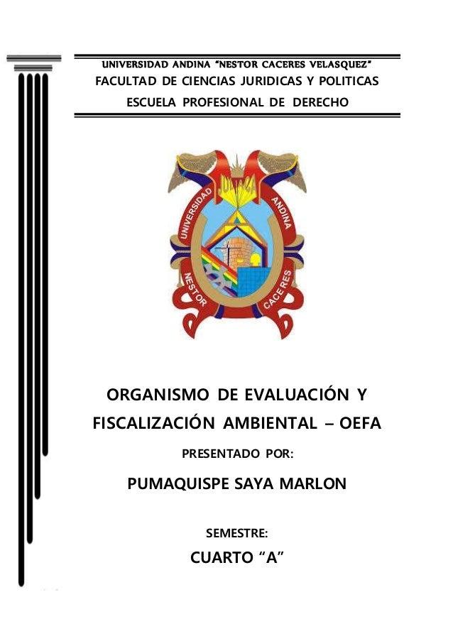 """UNIVERSIDAD ANDINA """"NESTOR CACERES VELASQUEZ"""" FACULTAD DE CIENCIAS JURIDICAS Y POLITICAS ESCUELA PROFESIONAL DE DERECHO OR..."""