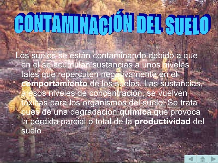 <ul><li>Los suelos se están contaminando debido a que en el se acumulan sustancias a unos niveles tales que repercuten neg...