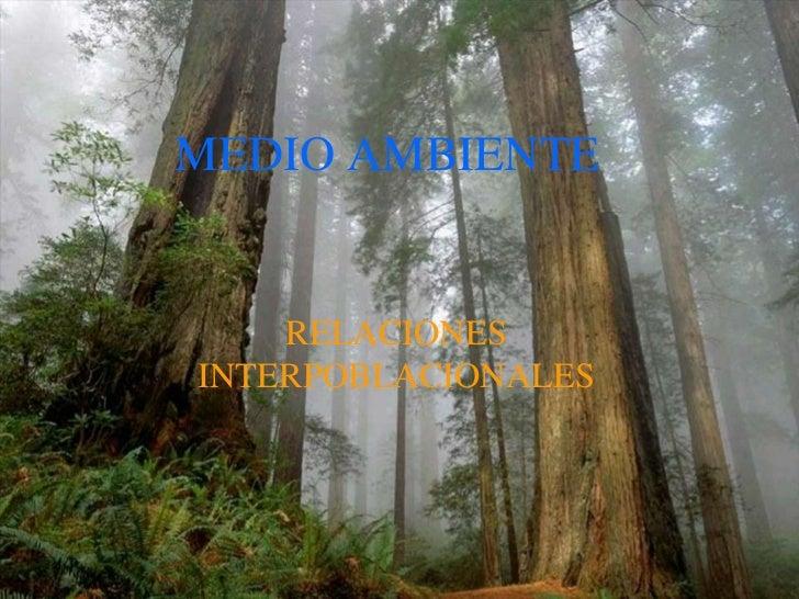 MEDIO AMBIENTE<br />RELACIONES INTERPOBLACIONALES<br />
