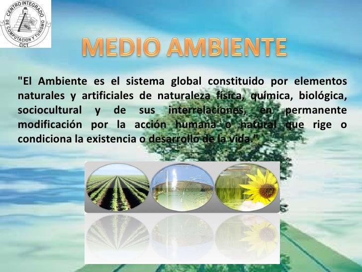 Medio ambiente liliana bonilla Slide 2