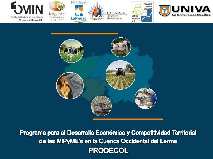 Programa para el Desarrollo Económico y Competitividad Territorial <br />de las MiPyME's en la Cuenca Occidental del Lerma...