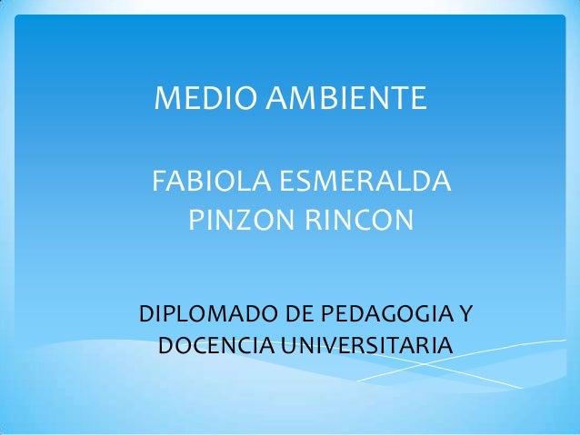 MEDIO AMBIENTE FABIOLA ESMERALDA PINZON RINCON DIPLOMADO DE PEDAGOGIA Y DOCENCIA UNIVERSITARIA