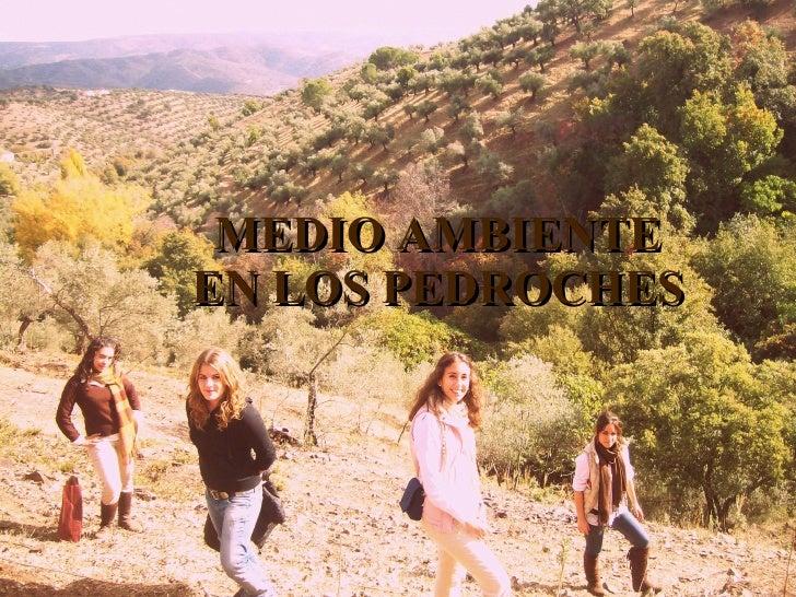 MEDIO AMBIENTE EN LOS PEDROCHES