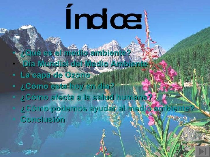 Índice:   <ul><li>¿Qué es el medio ambiente? </li></ul><ul><li>Día Mundial del Medio Ambiente </li></ul><ul><li>La capa de...