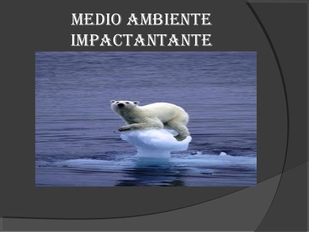 MEDIO AMBIENTEIMPACTANTANTE