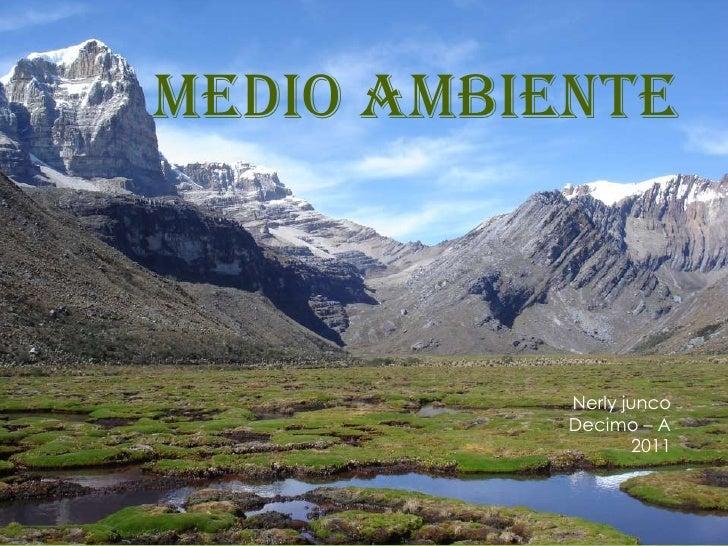 Medio ambiente <br />Nerly juncoDecimo – A2011 <br />