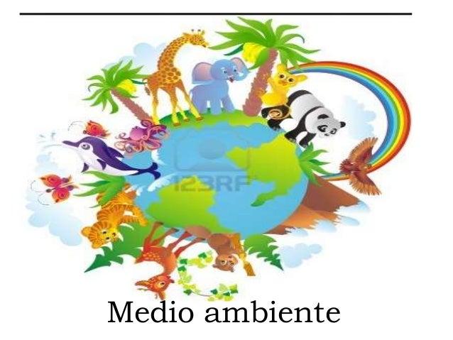 Medio ambiente - Humidificar el ambiente ...