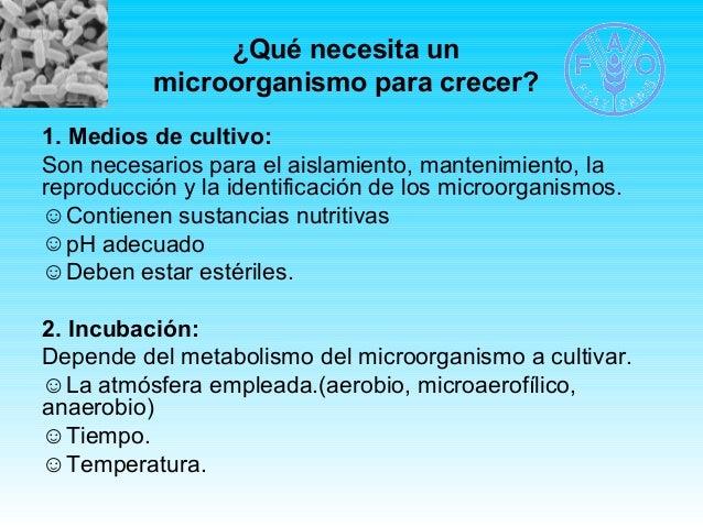 ¿Qué necesita un  microorganismo para crecer?  1. Medios de cultivo:  Son necesarios para el aislamiento, mantenimiento, l...