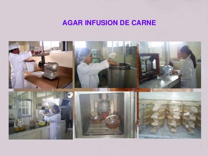 El gel se obtiene más blando que lo característico para elmedio: No fue garantizada la disolución total del agar durante ...