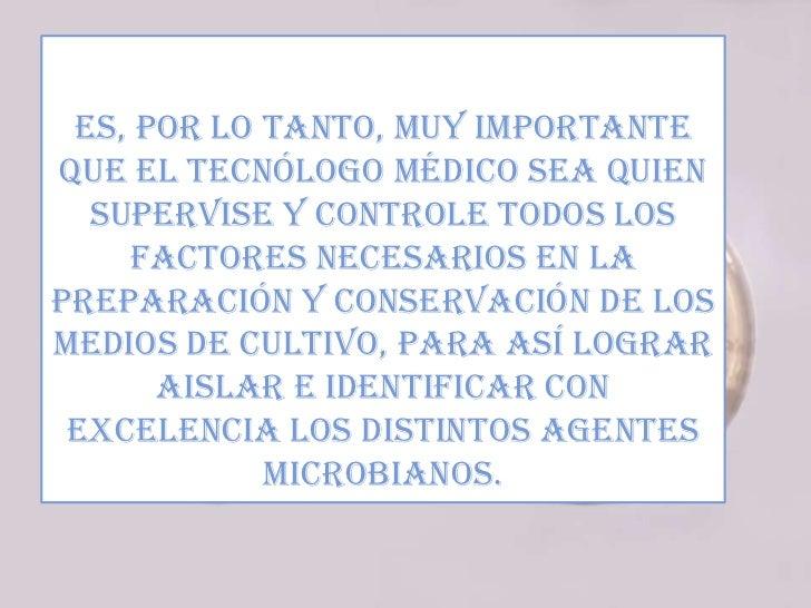 Figura 12: Siembra con rastrilloManual de microbiología 2011, U. Mayor