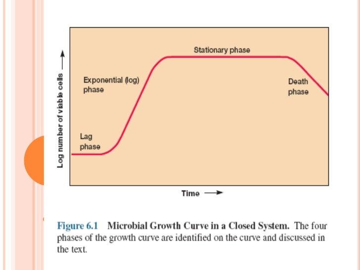 Figura 16: Siembra de tubo profundidad.Manual de microbiología 2011, U Mayor