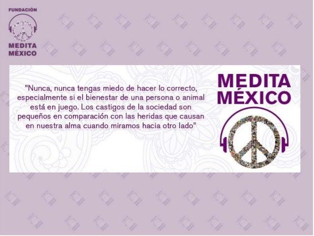 Medita México