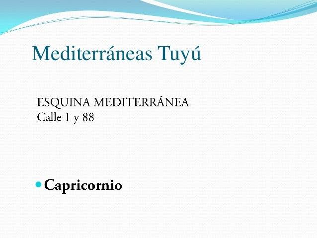 Mediterráneas Tuyú  