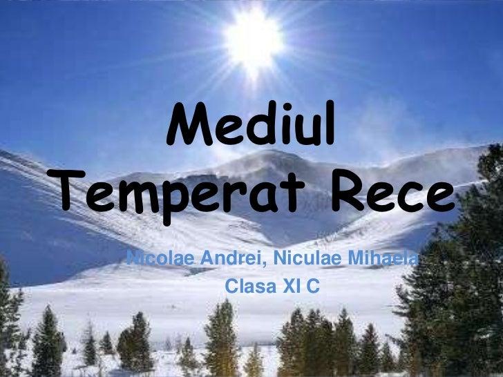 MediulTemperat Rece  Nicolae Andrei, Niculae Mihaela            Clasa XI C