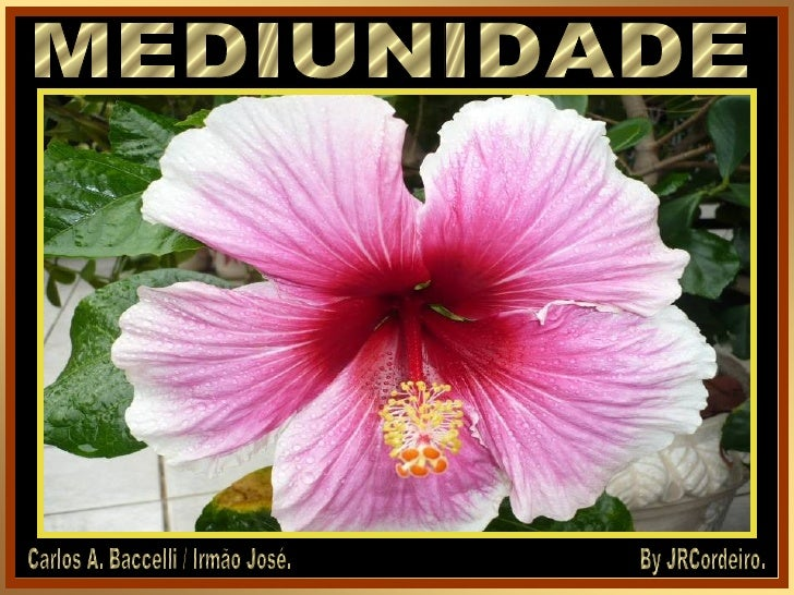 MEDIUNIDADE Carlos A. Baccelli / Irmão José. By JRCordeiro.