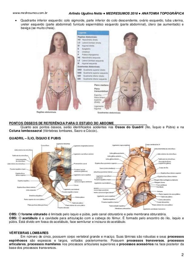 Medresumos 2016 anatomia topográfica - abdome