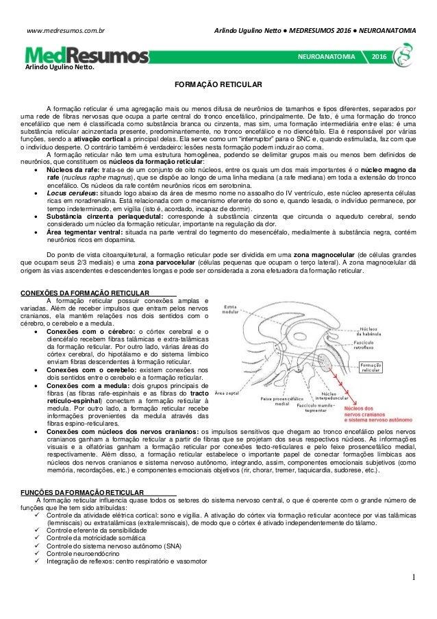 Arlindo Ugulino Netto ● MEDRESUMOS 2016 ● NEUROANATOMIA 1 www.medresumos.com.br FORMAÇÃO RETICULAR A formação reticular é ...