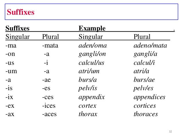 Med term1(terms)