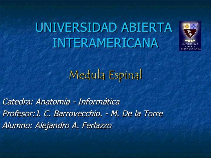 UNIVERSIDAD ABIERTA    INTERAMERICANA Medula Espinal Catedra: Anatomía - Informática Profesor:J. C. Barrovecchio. - M. De ...