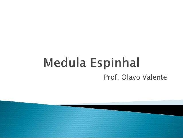 Prof. Olavo Valente